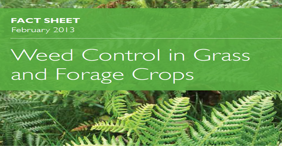 Weed Control in Grass and Forage Crops