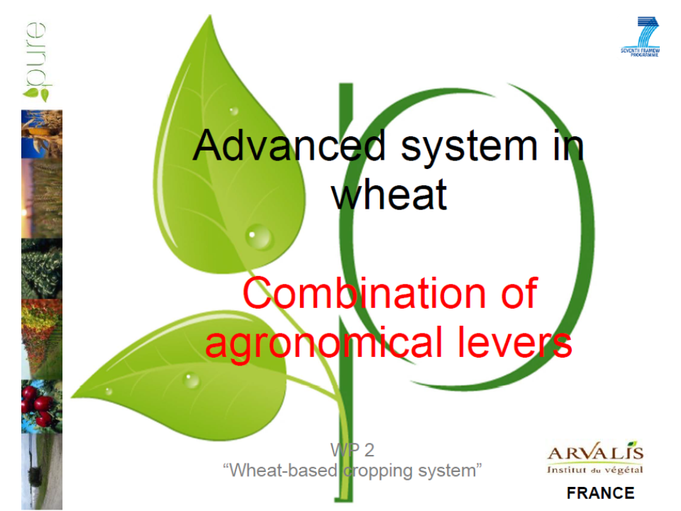Advanced system in wheat: Combination of agronomical levels: The French experiment