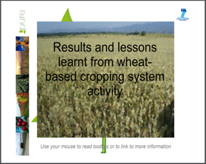 Results and lessons learnt from wheat-based cropping system activity