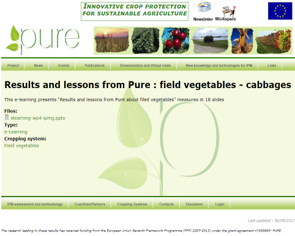 Results an lessons learnt from field vegetables activity - cabbage