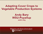 Organic Cover Cropping and Intercropping