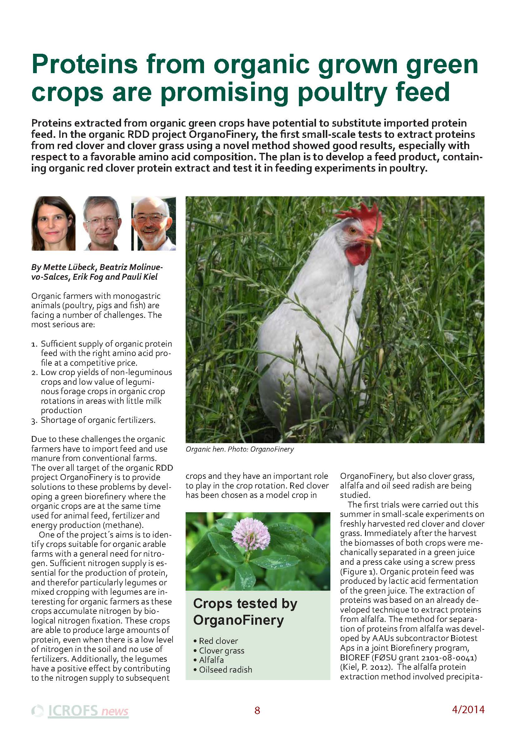 Proteins from organically grown green crops are promising poultry feed