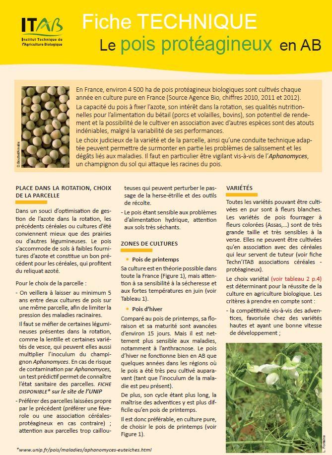 Organic pea production
