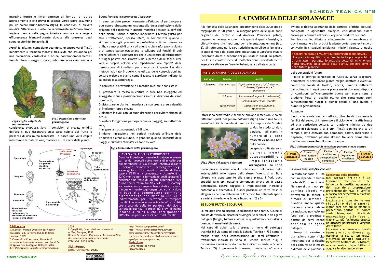 Potato (Solanum tuberosum L.)