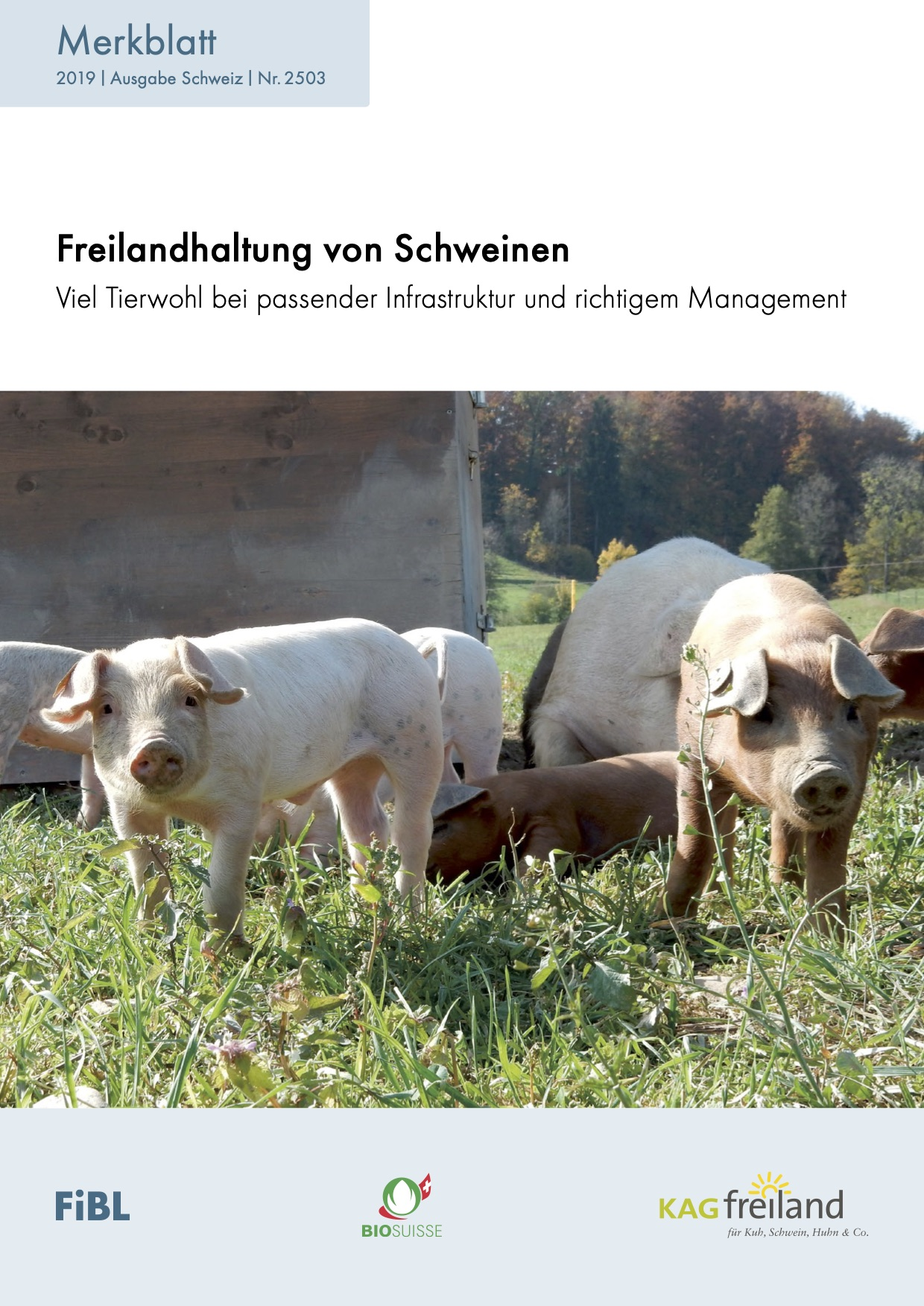Free-range pigs: high animal welfare with appropriate infrastructure and management