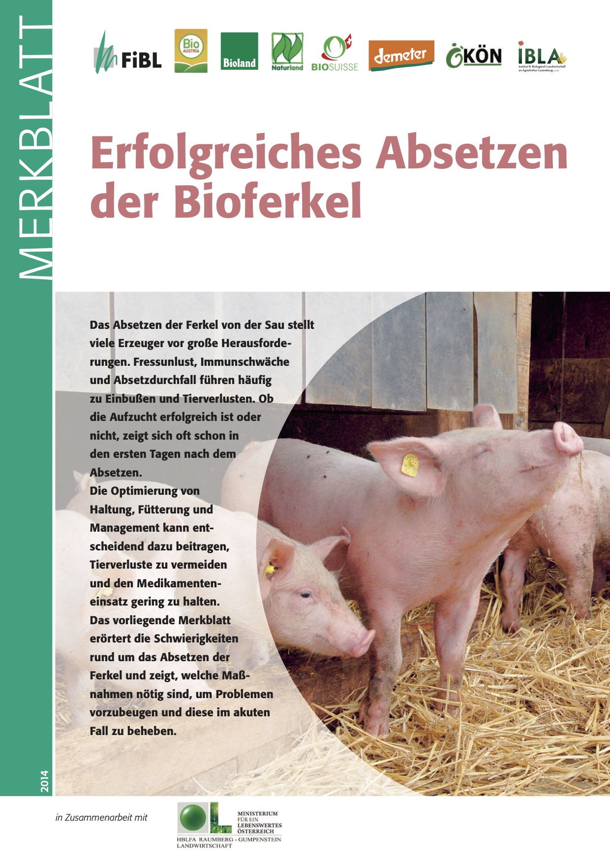 Successful weaning of organic piglets
